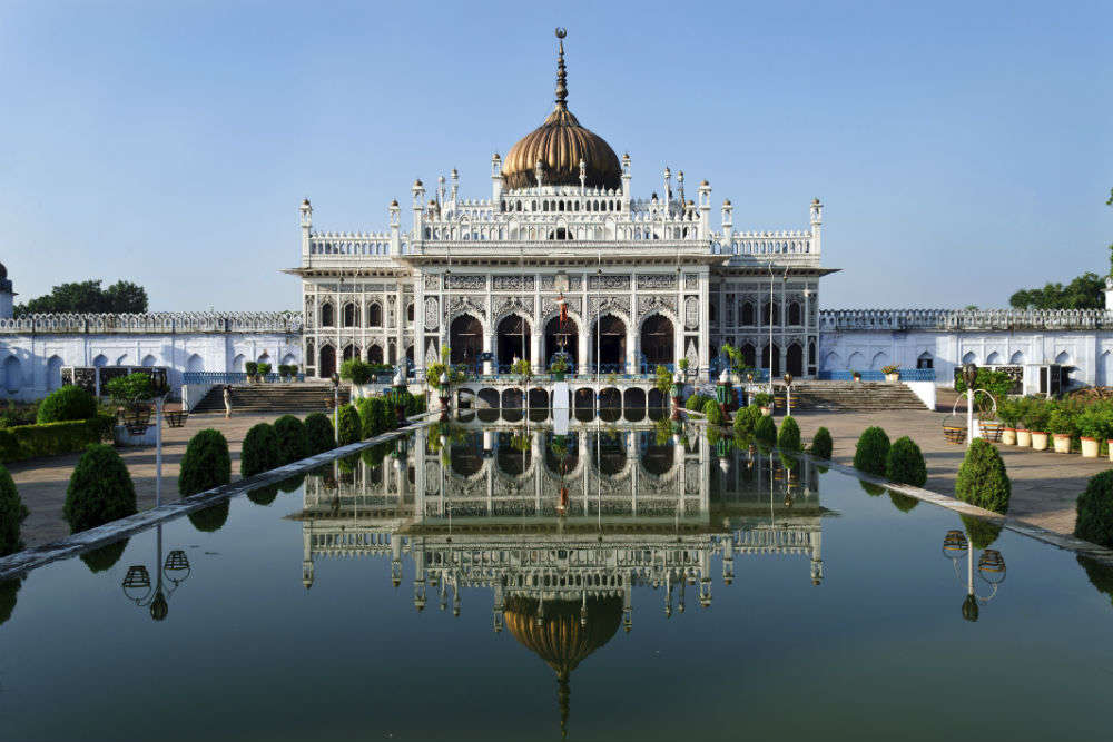 Buy Plants Online In Lucknow