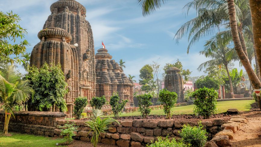 Buy Plants Online in Bhubaneswar