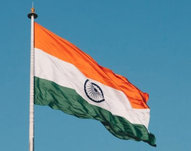 buy-plants-online-in-india-nestreeo-moz