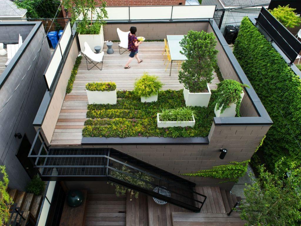 Terrace Gardening 03